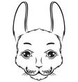 bunny muzzle vector image vector image