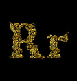 Decorated letter r vector image