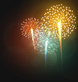 Set realistic fireworks different shapes Colorful vector image