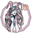 Zodiac signs Capricorn vector image