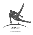 Male gymnast horse vector image