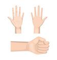 clean hands design vector image