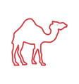 camel cartoon silhouette neon lines vector image