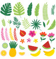 set of isolated with tropical plants and fruits vector image
