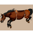brown horse in the jump with bent legs vector image