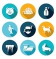 Antarctica icons set vector image