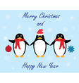 penguins winter vector image