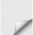 white checkered sheet of paper vector image