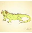 Sketch fancy iguana in vintage style vector image