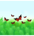 Natural background with butterflies vector image