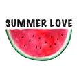 seamless watercolor hand drawn watermelon vector image