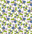 Blueberries pattern vector image vector image