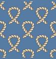 marine ropes seamless pattern vector image