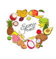 colorful natural tropical fruits round concept vector image