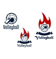Volleyball balls whistles and flames vector image vector image