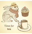 Sketch fancy hare cup cupcake in vintage style vector image