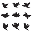 bird icons vector image