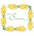 Frame summer gladioli vector image