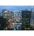 molecule logo vector image