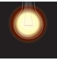 light bulb is lighting vector image vector image