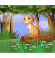 A cat in a forest vector image