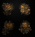 Festive Set Fireworks Salute on Transparent vector image