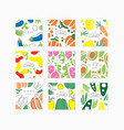 vegetable cards collection original design vector image