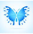 butterfly water aqua blue splash drops vector image vector image