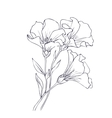 Hand drawn with flowers vector image