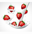strawberries and milk splash vector image
