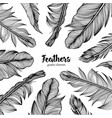 hand drawn frame with feathers on white background vector image