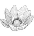 Lineart lotus flower line vector image