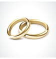 Gold Wedding Rings Isolated vector image