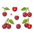 image of cherries vector image