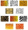 animal fur and skin vector image vector image