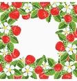 beautiful strawberries frame vector image