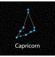 Capricorn Zodiac sign bright stars vector image