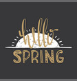 hello spring text to create a banner poster vector image