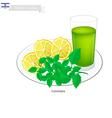 Lemonana or in Israeli Frozen Lemonade with Mint vector image