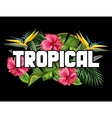 Print with tropical leaves and flowers Palms vector image