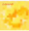 Natural Background with Honeycombs vector image