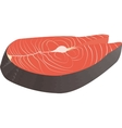 Steak of red fish salmon for sushi Isolated on vector image