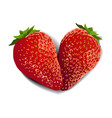 strawberry fruit heart vector image