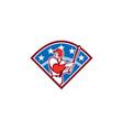 American Baseball Batter Hitter Bat Diamond Retro vector image vector image