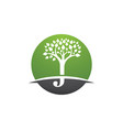 j letter with tree leaf logo template vector image