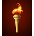 Realistic fire torch vector image