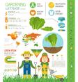 Gardening work farming infographic Lettuce Graphic vector image