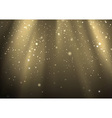 Light Rays And Light Dust vector image vector image