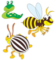wasp potato beetle and slug vector image