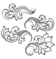 Baroque engraving leaf scroll vector image